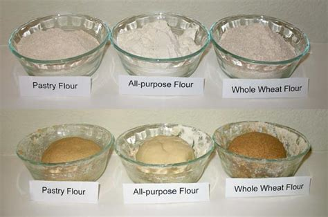 types  wheat flour