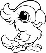 Coloring Cute Baby Parrot Pages Animal sketch template