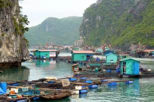 cat ba island cat ba island travel deals