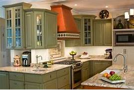 Olive Kitchen Design Ideas Remodels Amp Photos With Green Cabinets And Rai
