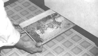 biological pollutants   home internachi