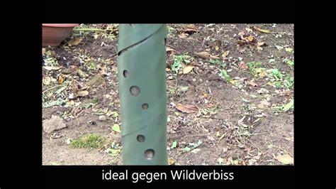 Schutz Gegen Aussenlaerm by Baumspiralen Eine L 246 223 Ung Gegen Wildverbiss