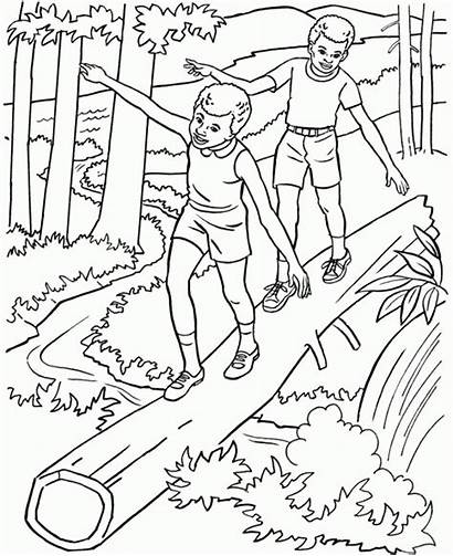 Coloring Nature Adults Pages