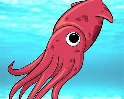 Squid Draw Central