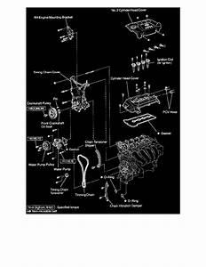 Bestseller  1nz Engine Diagram