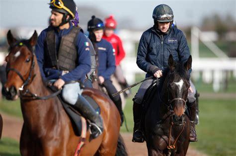 racing horse cheltenham tips walsh ruby festival kicks bets