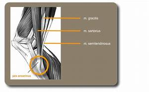 pijn scheenbeen tijdens lopen