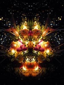 Blumen Im November : thema des monats november entdeckte gesichter blumen ~ Lizthompson.info Haus und Dekorationen