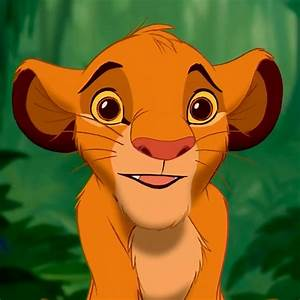 Related Keywords & Suggestions for simba face