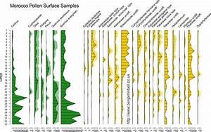 Benjamin Bell  Blog  Pollen Diagrams In R Using Rioja