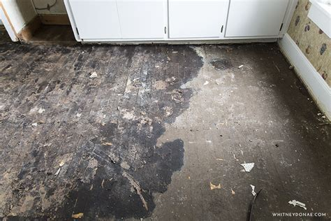How To Remove Tar Paper From Wood Floors ? Whitken & Co