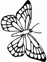 Butterfly Coloring Monarch Pages Butterflies Colouring Printable Sheets Outline Pretty Cute Drawing Print Flower Google Templates Template Getdrawings Kelebek Clipartmag sketch template