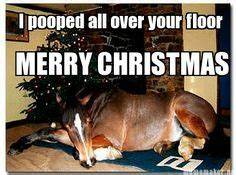 351 Best Funny ... Funny Christmas Horse Quotes