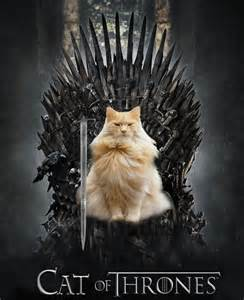 cat of thrones if the cast of of thrones were cats