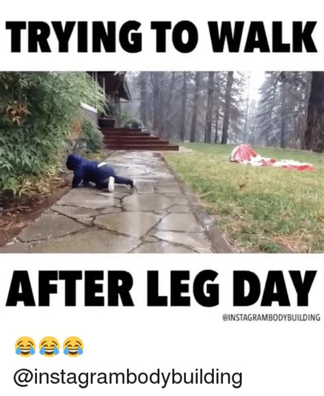 Leg Day Memes - 25 best memes about after leg day after leg day memes