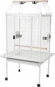 Cage A Perroquet : cage perroquet grande perruche gris du gabon cacatoes kubeo blanche animaloo ~ Teatrodelosmanantiales.com Idées de Décoration