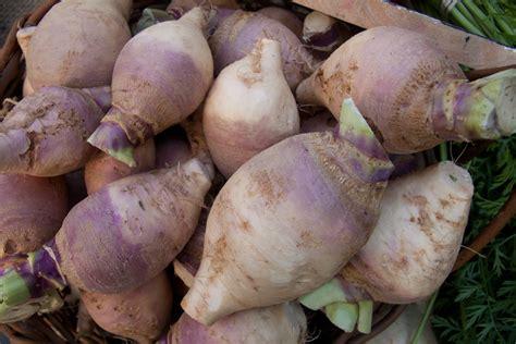 cuisiner les rutabagas recettes de rutabaga idées de recettes à base de rutabaga
