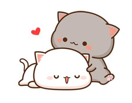 pin  genius  mi tao mao cute gif cute cats