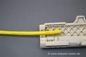 Lan Kabel Belegung : anleitung netzwerkkabel mit rj45 stecker crimpen ~ A.2002-acura-tl-radio.info Haus und Dekorationen
