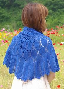 Issuedf16    Wings For Nightbird   Knitty Com