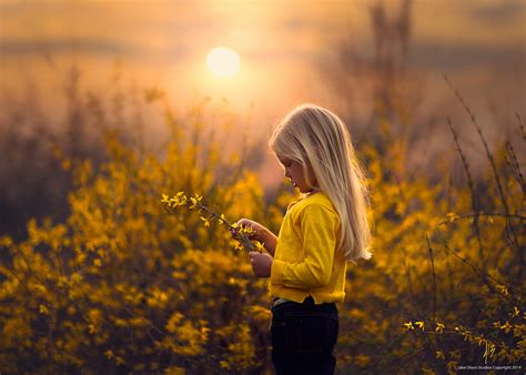 Yellow Jake Olson Studios