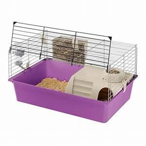 Cage A Cochon D Inde : cage cochon d inde achat vente cage cochon d inde pas ~ Dallasstarsshop.com Idées de Décoration