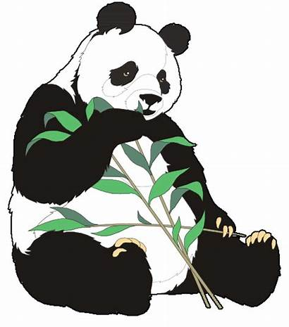 Clipart Animals Endangered Panda Clip Pandas Clipground