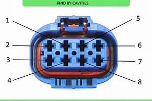 Wiring Manual Pdf  12 Pin Molex Wiring Diagram