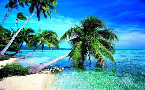 tropical beach wallpaper p long wallpapers