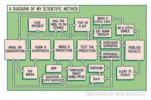 Tom Gauld U0026 39 S Diagram Of The Scientific Method