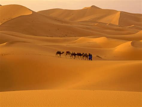 sahara sand desert map images geography xcitefunnet