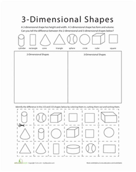 sort 2d and 3d shapes worksheet education