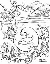 Coloring Sea Animals Santa Cruz Animal July Sheets sketch template