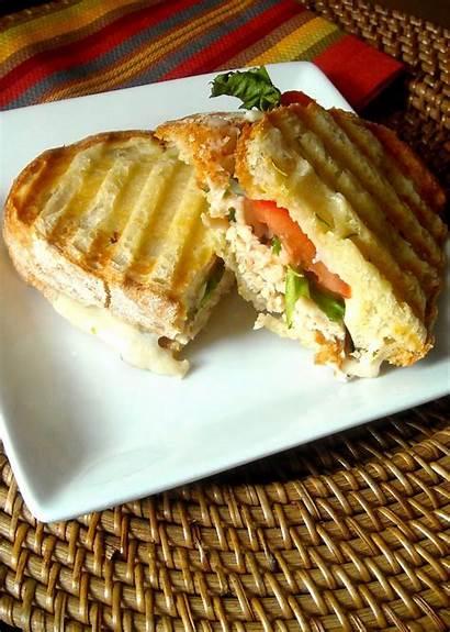 Panini Turkey Ciabatta Bread Balsamic Sandwiches Types