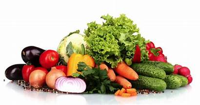 Healthy Foods Eat Eating Brain Wants Right