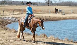 Western Horse Training   Improve your western riding ...