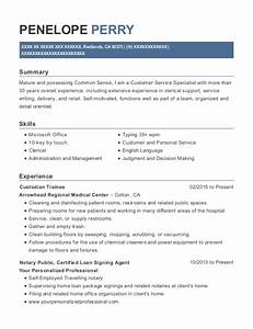 Custodian Resumes Best Notary Public Resumes Resumehelp