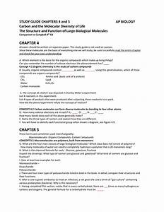 Study Guide Chapters 4 And 5 Ap Biology