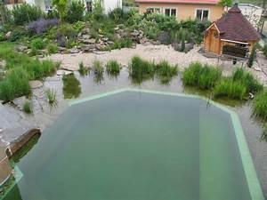 Schwimmbad Garten Kosten : schwimmteich planen und bauen ~ Markanthonyermac.com Haus und Dekorationen