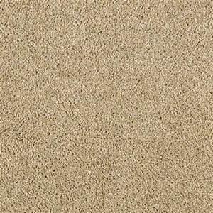 Lifeproof carpet sample pagliuca i color shell beige for Modern beige carpet texture