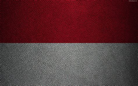 wallpapers flag  indonesia  leather texture