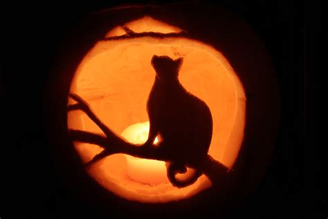 Cat Jackolantern Halloween2019 Jack O Lantern Patterns