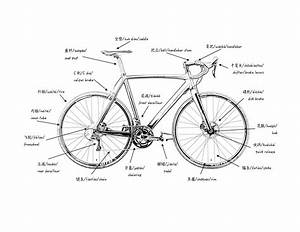 Bike Parts Diagram   18 Wiring Diagram Images