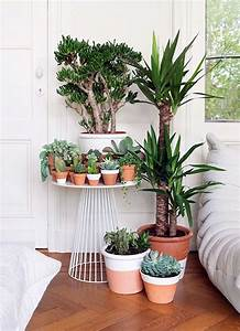 40 Smart Mini Indoor Garden Ideas Bored Art