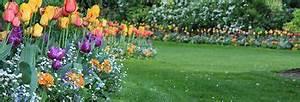 Refaire Son Jardin : pour embellir votre jardin pensez refaire le gazon ~ Nature-et-papiers.com Idées de Décoration