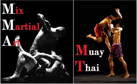 Mixed Martial Arts Or Muay Thai  Singpatong Sitnumnoi. Denver Video Production Online Business Cards. Schools Of Hospitality Hair Transplant Dallas. Hormonal Imbalance Acne Lifelock Vs Trustedid. Colleges In Tulsa Oklahoma Grand Forks Banks. Riverside Elementary School York Auto Repair. Server Installation Services. Lakeland Hospital Elkhorn Wisconsin. Setting Up A Database In Excel