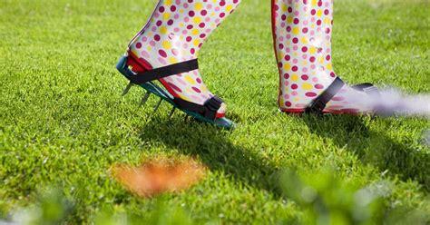lawn aeration lawn aeration
