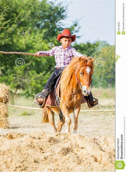 Livestock Cowboy Competition Action Animals Fair Horse
