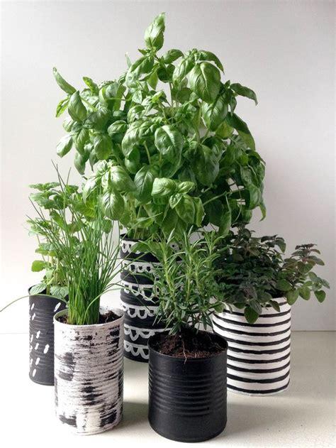 herbes cuisine 17 meilleures idées à propos de jardin d 39 intérieur d