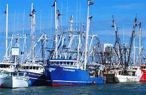 Commercial Fishing | Cape May County, NJ - Official Website